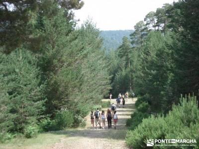 Valle del Lozoya - Camino de la Angostura;marcas de montaña ruta por la sierra de madrid